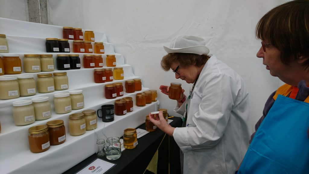 Scottish National Honey Show, 2017, Camperdown Park, Dundee. Judge Hazel Blackburn. Steward Ruth Irons, Fife Beekeeper