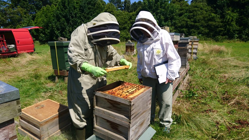 George Young, Fife member, (left) being examined for his SBA Basic Beekeeper Exam by Margaret Thomas, 2017